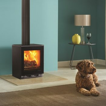 Stovax & Gazco Vision Small wood burning stove