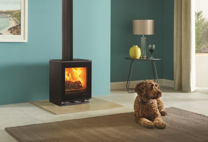 Stovax & Gazco Vision Small wood burning or multi-fuel stove