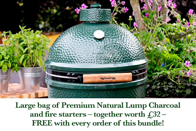 Big Green Egg Large.Big Green Egg Large With Nest Bundle The Fireplace Company